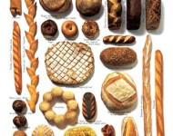 Lire la suite de Apports nutritionnels du pain et recommandations