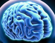 Lire la suite de Maladie d'Alzheimer : quelques repères