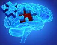 Lire la suite de Test schizophrénie : les outils de dépistage existants