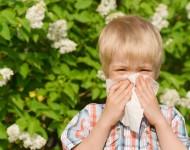 Lire la suite de Allergies respiratoires : enfants et ados premiers concernés