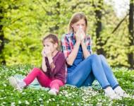 Lire la suite de Journée de l'Allergie : vers un plan dédié ?