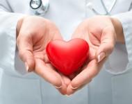 Lire la suite de Greffes d'organes : la hausse s'est poursuivie en 2016