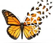 Lire la suite de Sclérose en plaques : Changer les regards sur la maladie
