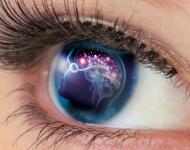 Lire la suite de Problèmes de vision  ou de mémoire ?  La réponse Densmore