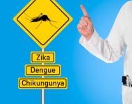 Lire la suite de Maladies vectorielles : que doit-on craindre ? – ITW