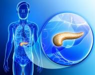 Lire la suite de Un nouveau test pour détecter tôt un cancer du pancréas ?