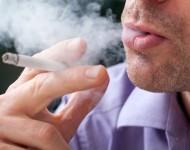 Lire la suite de Le tabac tue plus de 7 millions de personnes par an