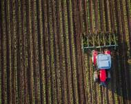 Lire la suite de Quand changement climatique réduit les rendements agricoles – Etude