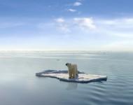 Lire la suite de Le changement climatique : un impact «clair» sur notre santé