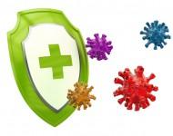 Lire la suite de Microbiote vs immunité  : on vous dit tout !