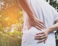 Lire la suite de Mal de dos : et pourquoi pas la phytothérapie ?